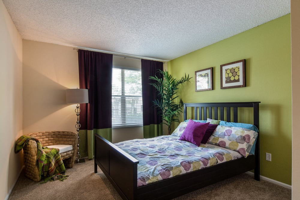 Accent wall and plush carpeting in a model home's master bedroom at Waterfield Court Apartment Homes in Aurora, Colorado