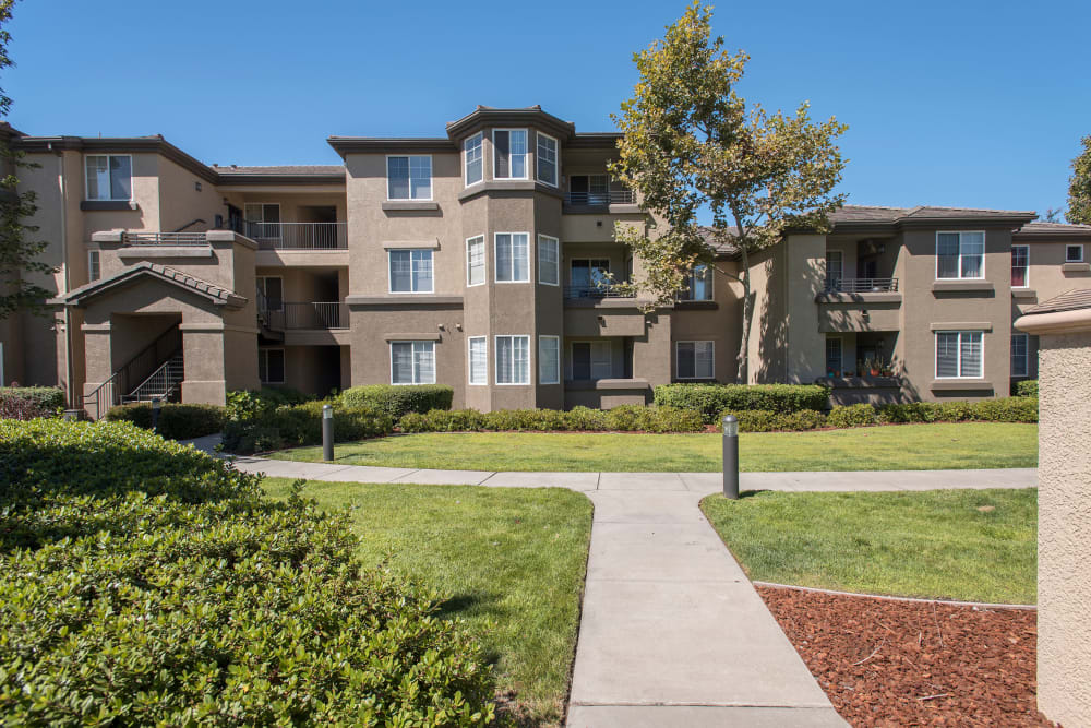 Beautifully maintained landscaping at The Artisan Apartment Homes in Sacramento, California