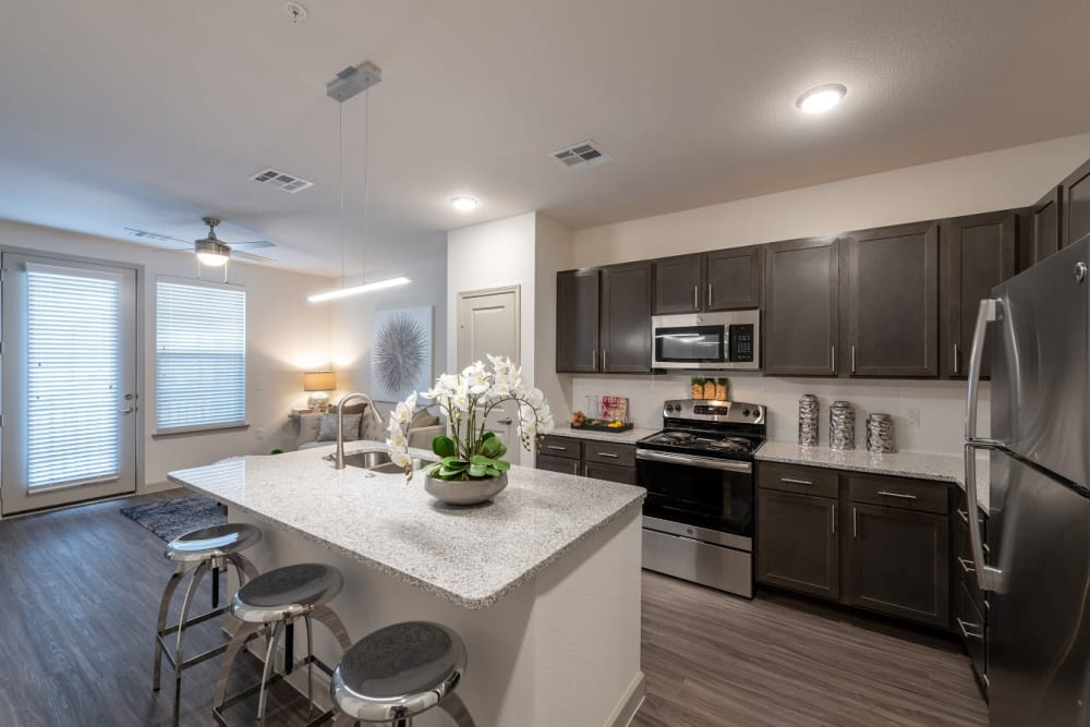 High end senior apartment with stainless steel appliances and granite style countertops at The Luxe at Cedar Hill in Cedar Hill, Texas