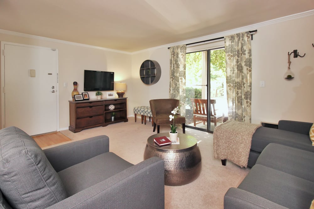 Our Spacious Apartments in Germantown, Maryland showcase a Living Room