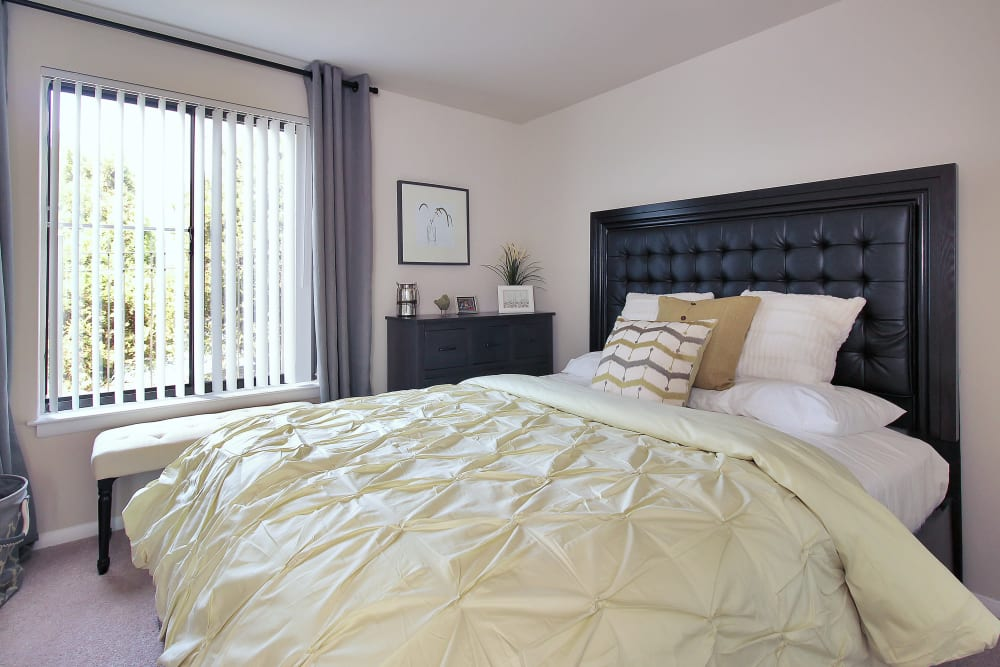 The Hamptons at Town Center offers a naturally lit bedroom in Germantown, Maryland