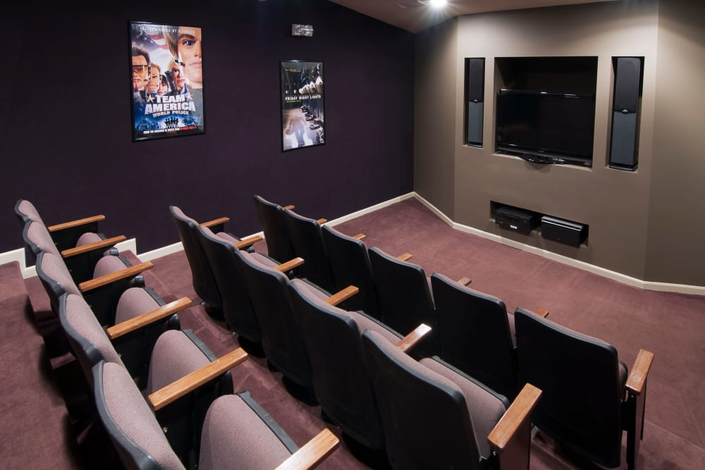 Movie theater space with surround sound at Amber Chase Apartment Homes in McDonough, Georgia
