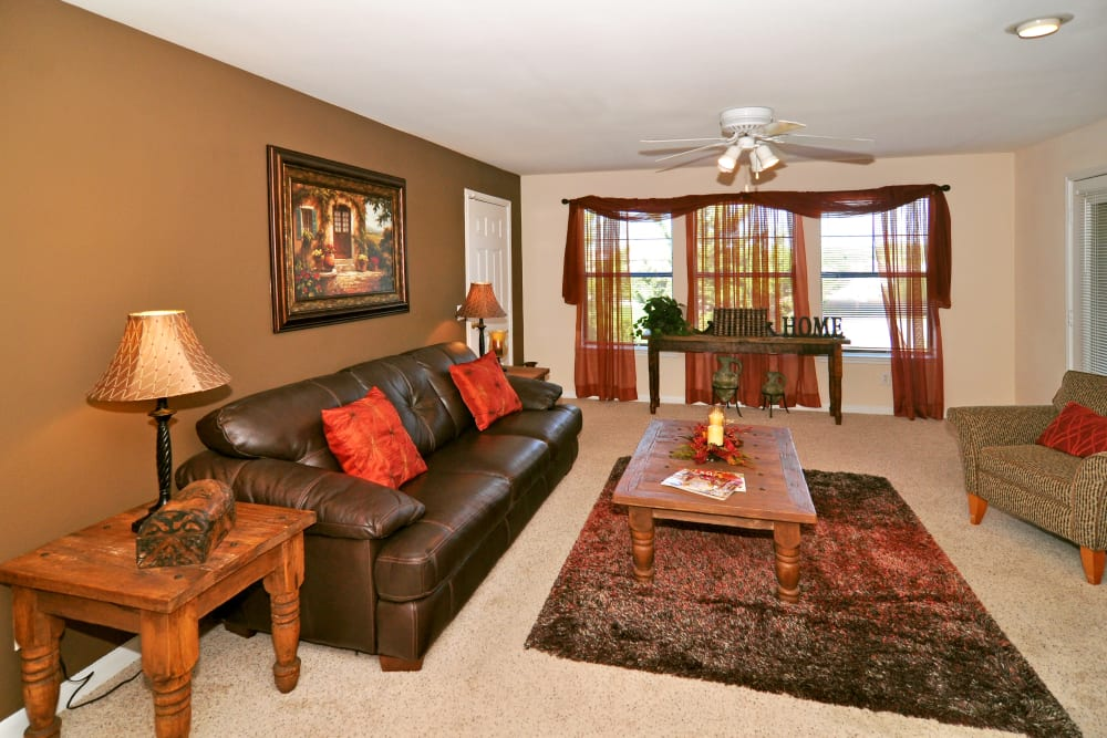 Couches and area rug in finely decorated Living room at Arbrook Park Apartment Homes in Arlington, Texas