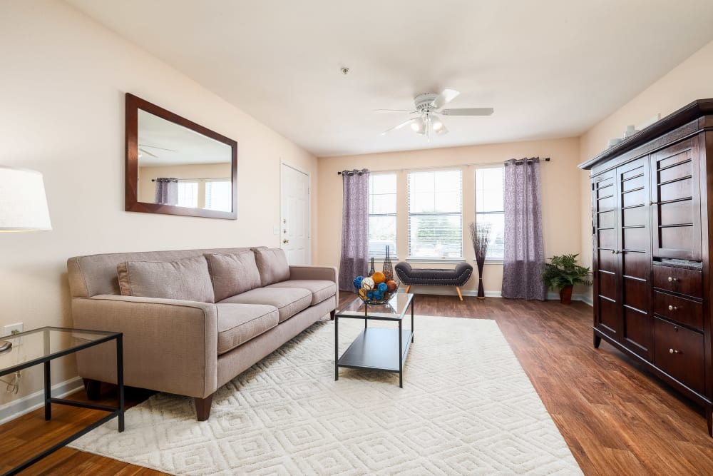 Modern decor and spacious living room is naturally lit by large windows at Arbrook Park Apartment Homes in Arlington, Texas