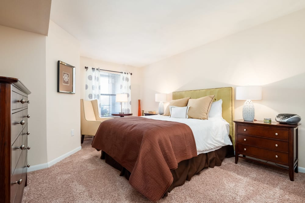 Spacious bedroom with lots of natural light from large window at Arbrook Park Apartment Homes in Arlington, Texas