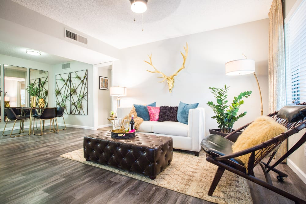 Modern decorations are a feature of this model home at 4127 Arcadia in Phoenix, Arizona