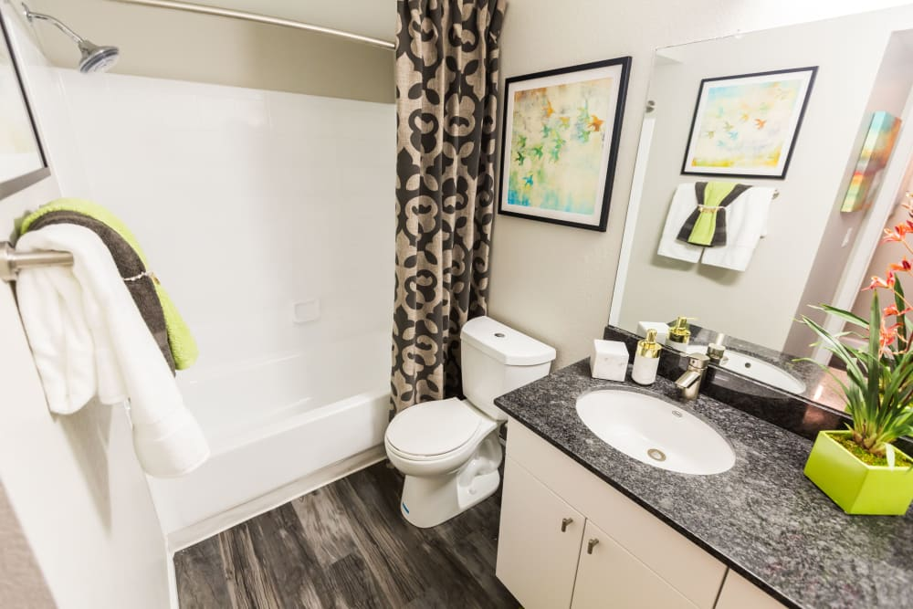 Bathroom with shower and large vanity mirror at 4127 Arcadia in Phoenix, Arizona