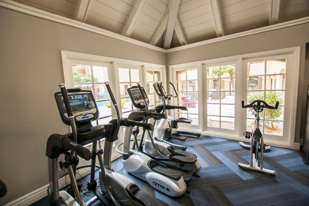 Fitness center equipment in high ceiling workout space at 4127 Arcadia in Phoenix, Arizona