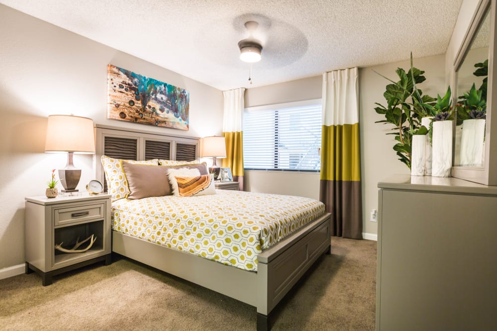 Beautifully decorated spacious bedroom with large windows for natural light at 4127 Arcadia in Phoenix, Arizona