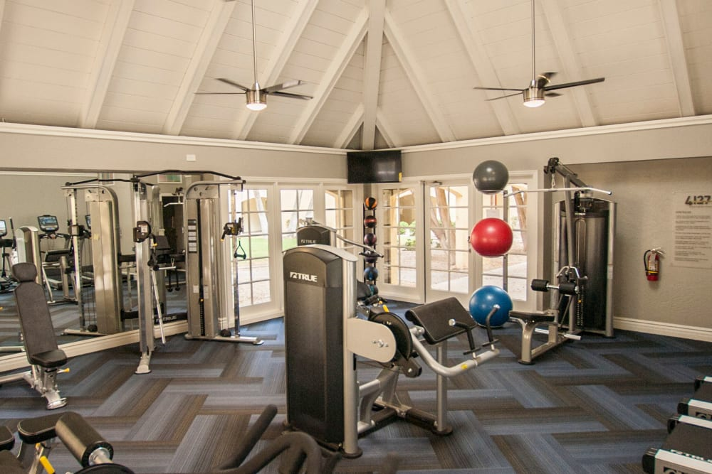 Modern fitness equipment in high ceilings workout space at 4127 Arcadia in Phoenix, Arizona