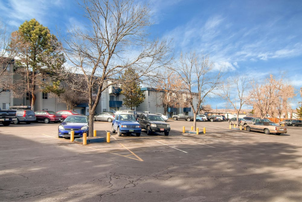 Large parking lot with mature trees at Arvada Green Apartment Homes in Arvada, Colorado