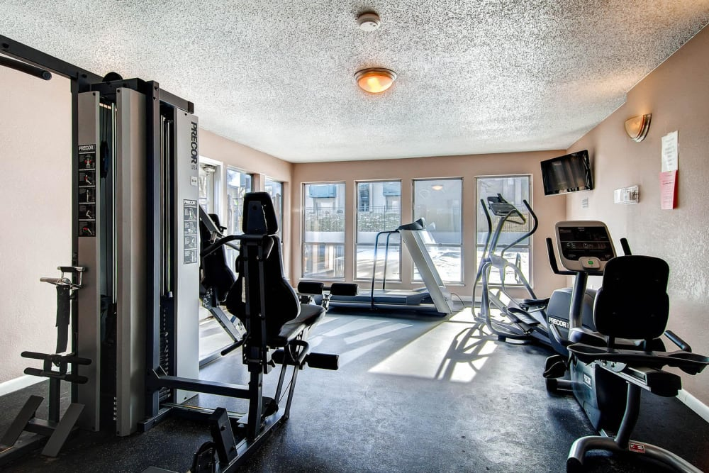 Fitness equipment in fitness center with large windows for a bunch of natural light at Apartments in Arvada, Colorado