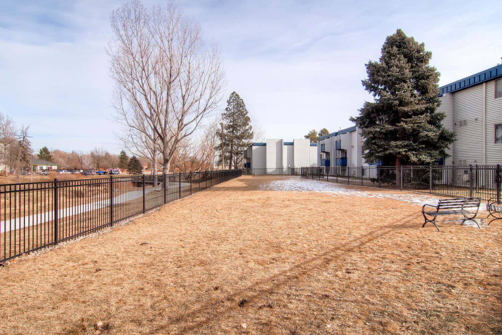 Large field at Arvada Village Apartment Homes in Arvada, Colorado