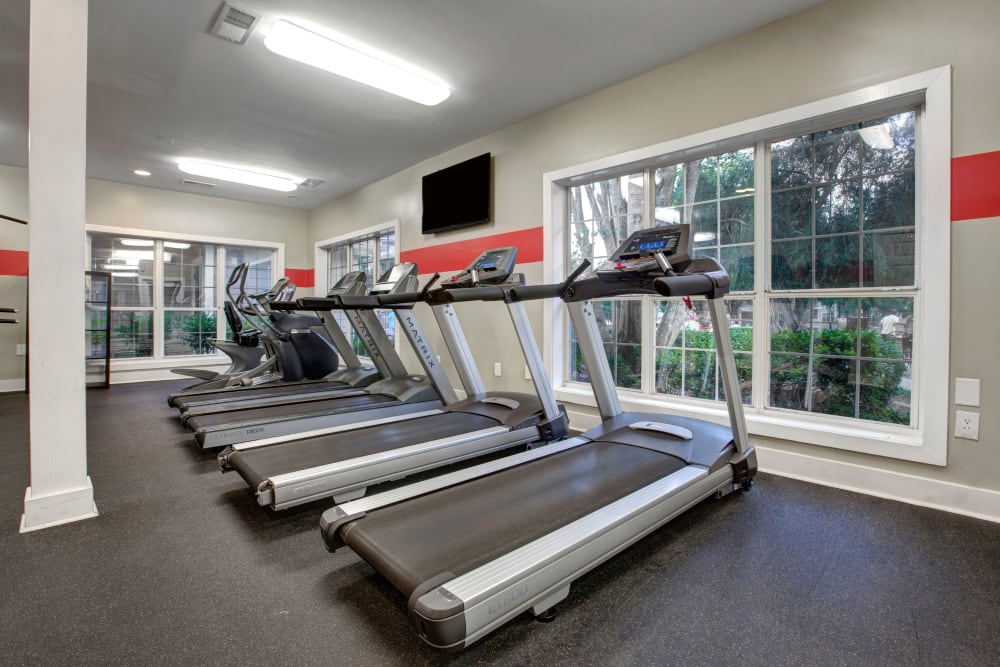 Fitness center featuring treadmills and other exercise equipment at Avia at North Springs in Atlanta, Georgia
