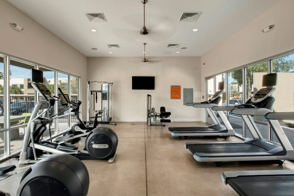 Fitness center with exercise bikes and treadmills at Avia McCormick Ranch Apartments in Scottsdale, Arizona
