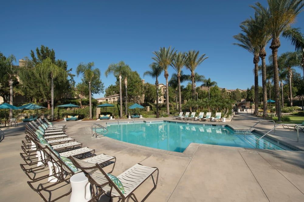 Resort-style swimming pool with plenty of lounge chairs at Esplanade Apartment Homes in Riverside, California