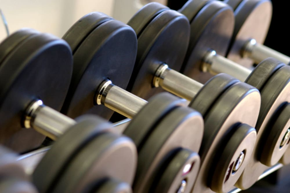 Free weights in the onsite fitness center at Magnolia on the Green in Allen, Texas