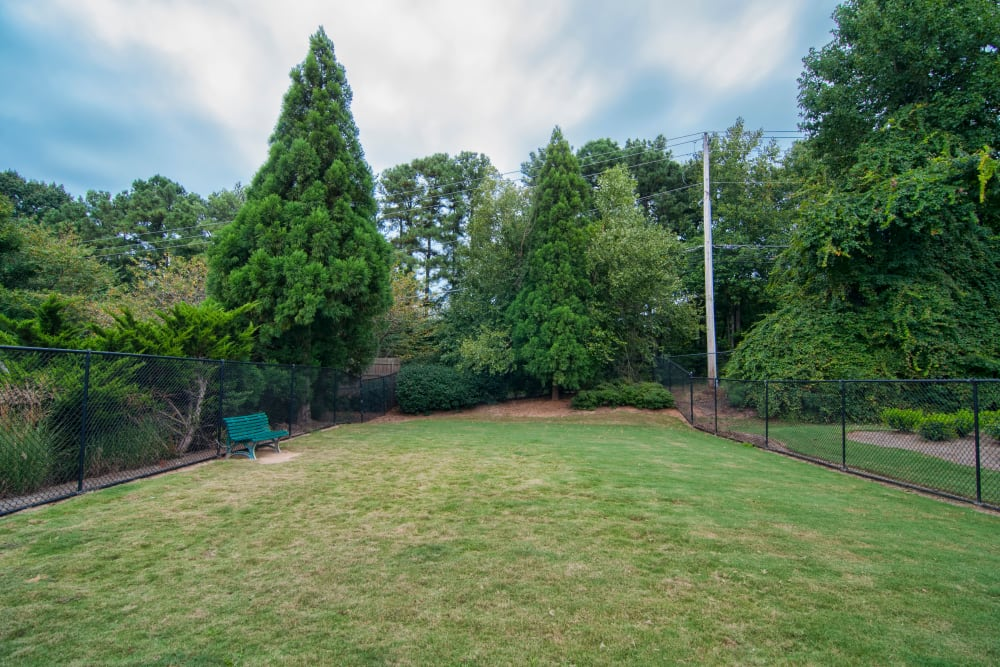 Large grassy field with mature trees located at Bellingham Apartment Homes in Marietta, Georgia