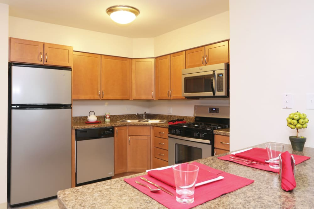 Spacious kitchen featuring stainless steel appliances and lots of cabinet space in an apartment at Blackhawk Apartments in Elgin, Illinois