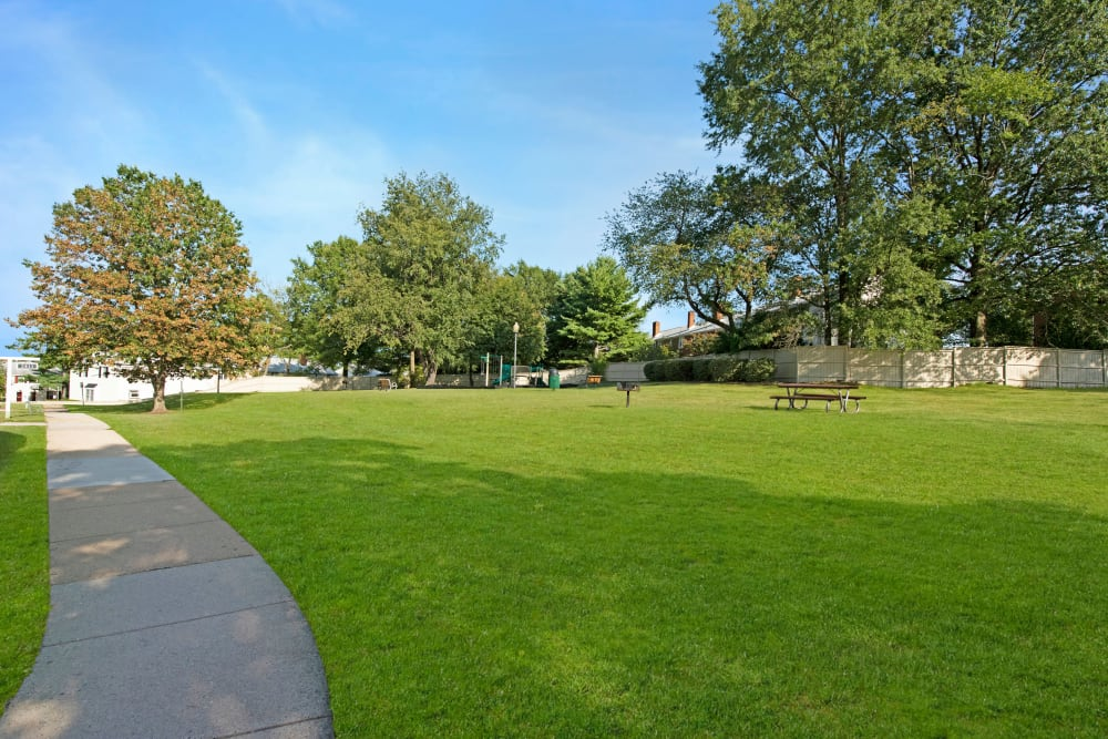 Pathways and mature trees in large grassy green space at Braddock Lee Apartments in Alexandria, Virginia