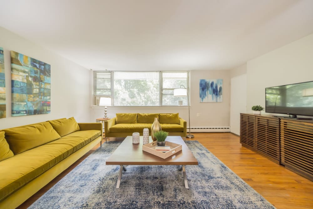 Stylish living room featuring hardwood floors, couches In an apartment at Cherokee Apartments in Philadelphia, Pennsylvania
