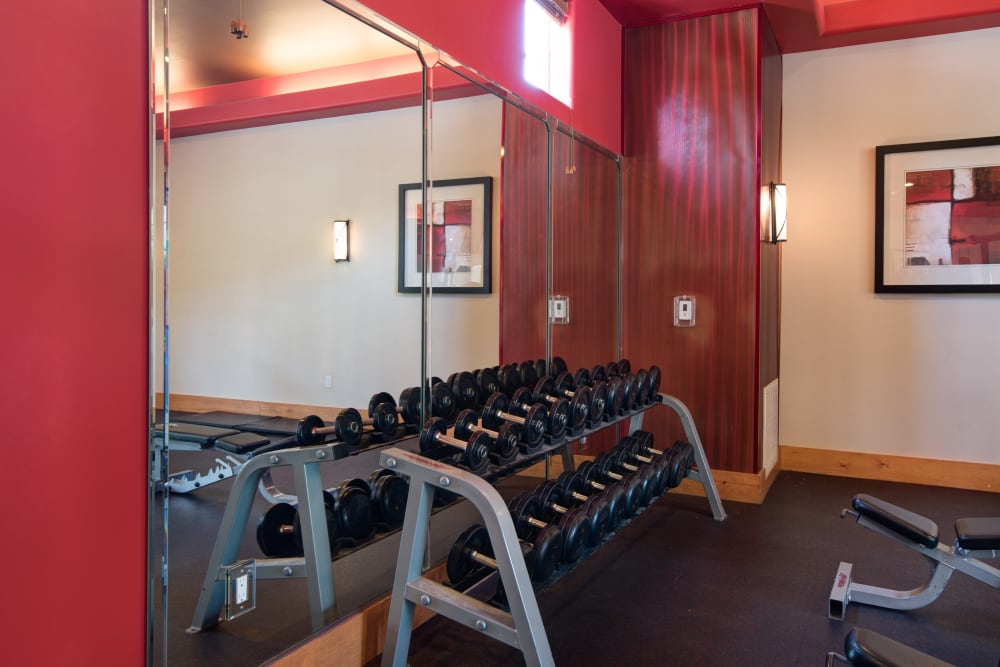 Free weights in the fitness center at Broadstone Towne Center in Albuquerque, New Mexico