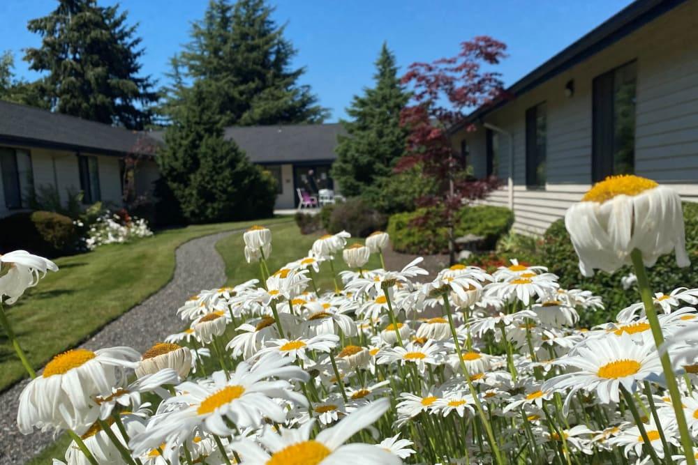 flowers at Logan Creek Retirement Community
