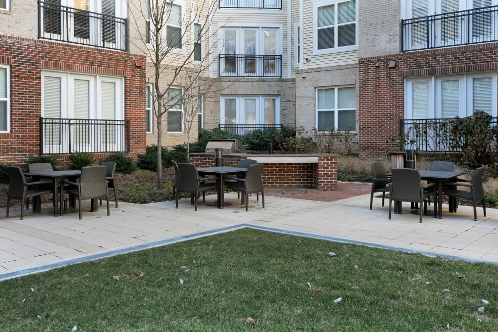 Outdoor barbecue for residents at The Mark at Brickyard Apartment Homes in Beltsville, Maryland