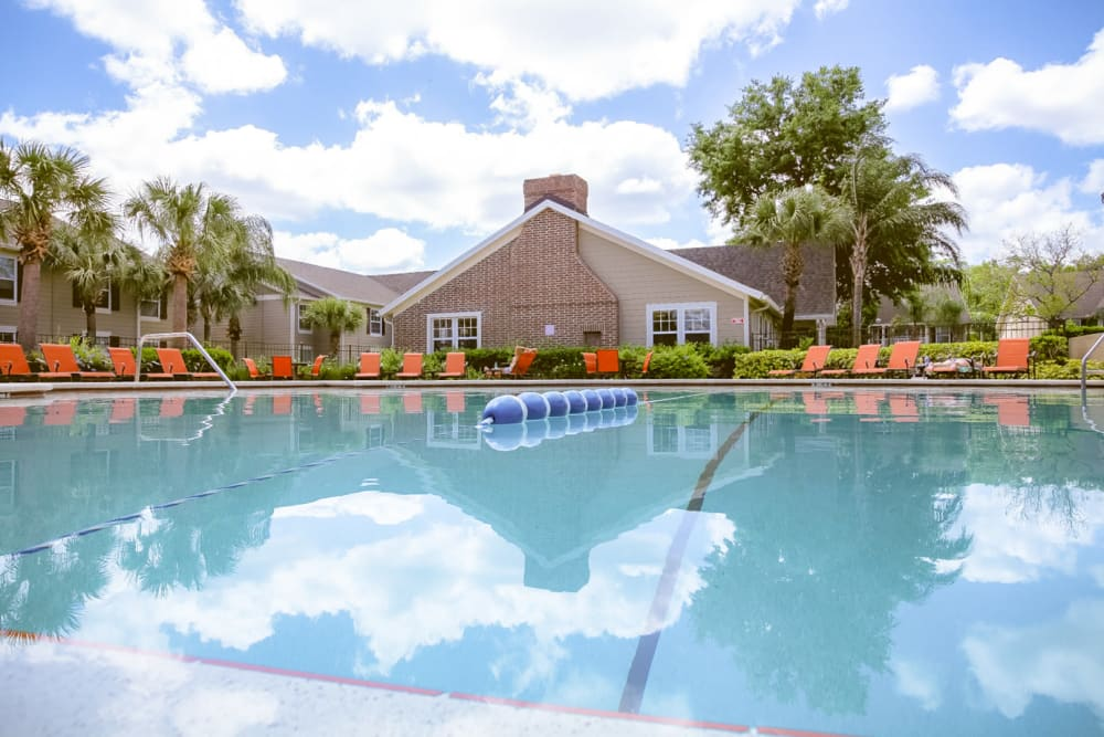 Lap pool at Signal Pointe Apartment Homes in Winter Park, Florida
