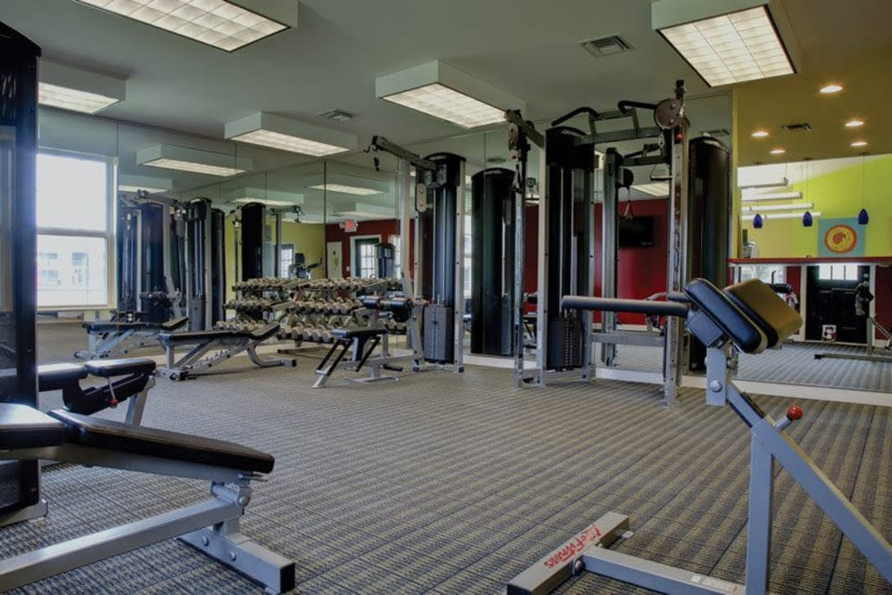 Well equipped fitness center at Signal Pointe Apartment Homes in Winter Park, Florida
