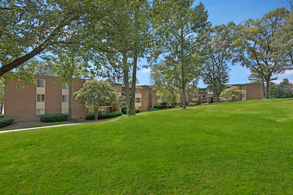 Large grassy field with mature trees and apartment buildings in the background at Cinnamon Run at Peppertree Farm in Silver Spring, Maryland