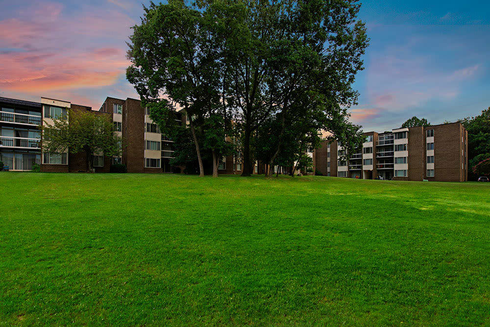Apartment buildings with mature tree and large grassy field at Cinnamon Run at Peppertree Farm in Silver Spring, Maryland