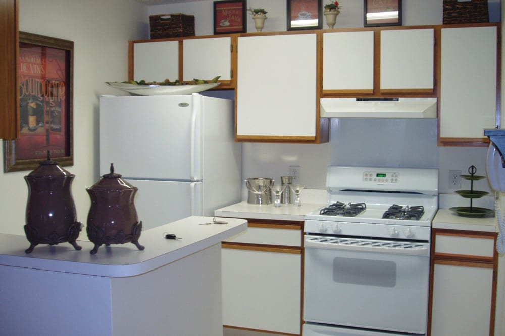 Kitten featuring white appliances in cupboards at The Commons At Haynes Farm in Shrewsbury, Massachusetts
