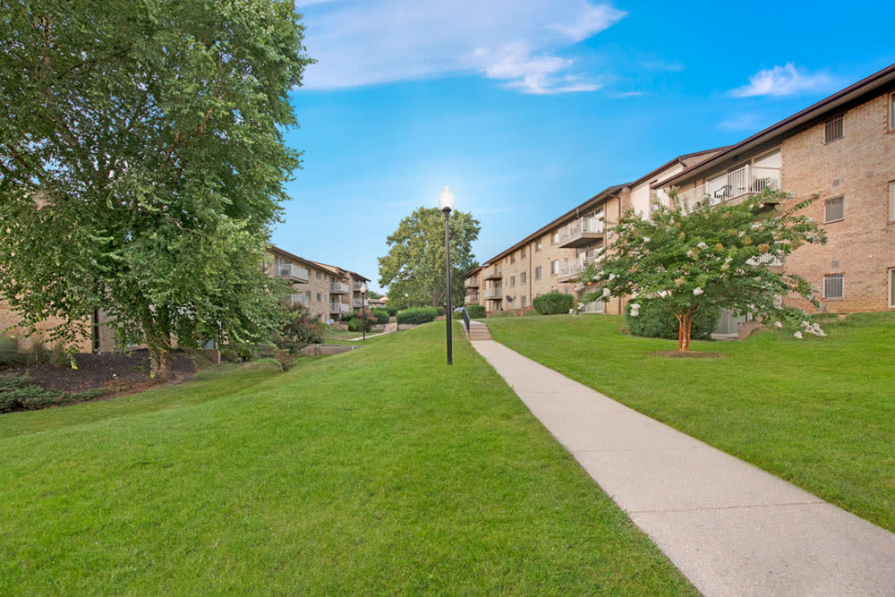 Sidewalk lined by lush lawn at Country Village Apartments in Bel Air, Maryland
