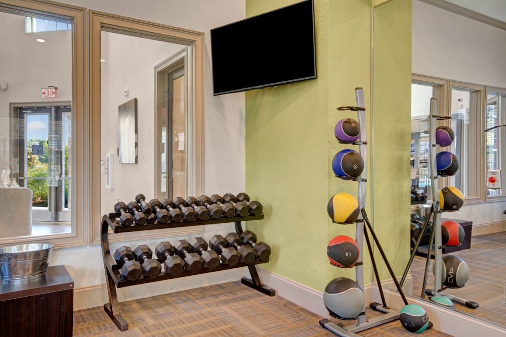 Free weights in other workout equipment in fitness Center at Creekside South in Wylie, Texas