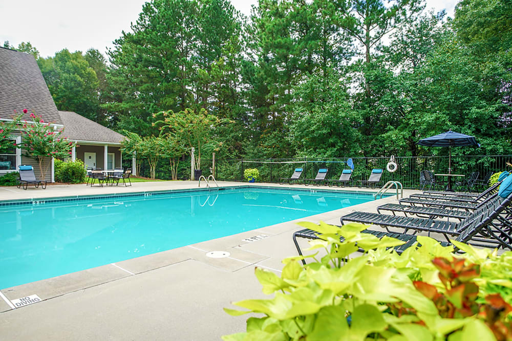 Lounge chairs and greenery line the community swimming pool at Hidden Creek in Morrow, Georgia