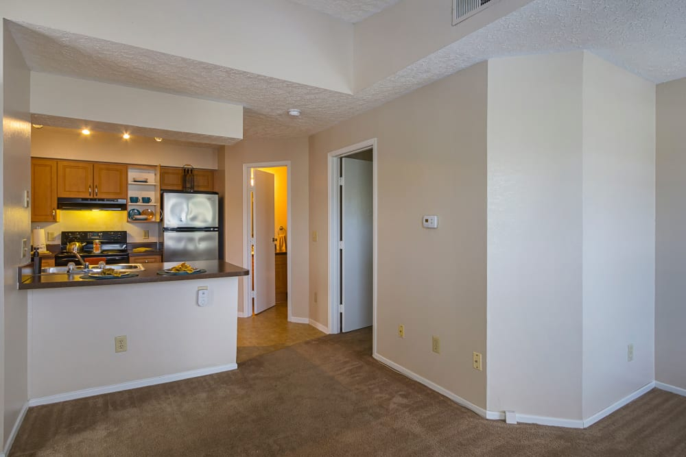Our Spacious Apartments in Columbus, Ohio showcase a Living Room and kitchen with modern amenities