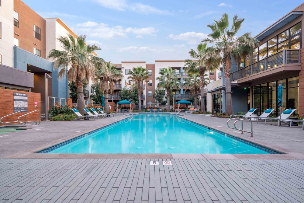 Sparkling swimming pool at Sofi Riverview Park