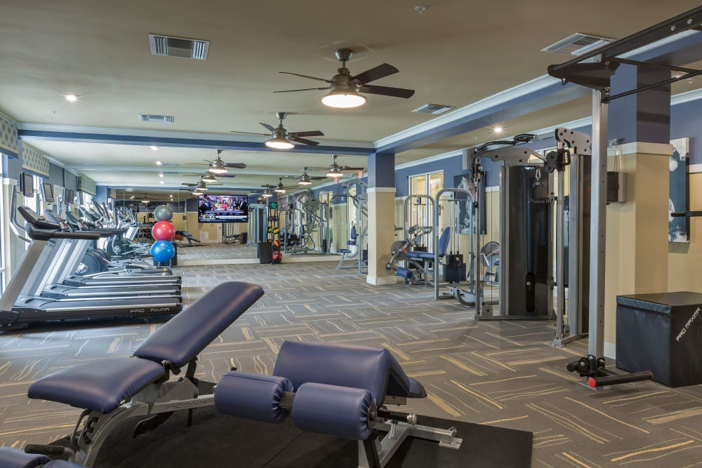 Fitness equipment at Integra Lakes in Casselberry, Florida