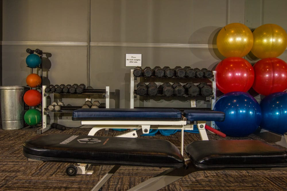 Free weights and exercise balls in the fitness center at The Lodge at River Park in Fort Worth, Texas