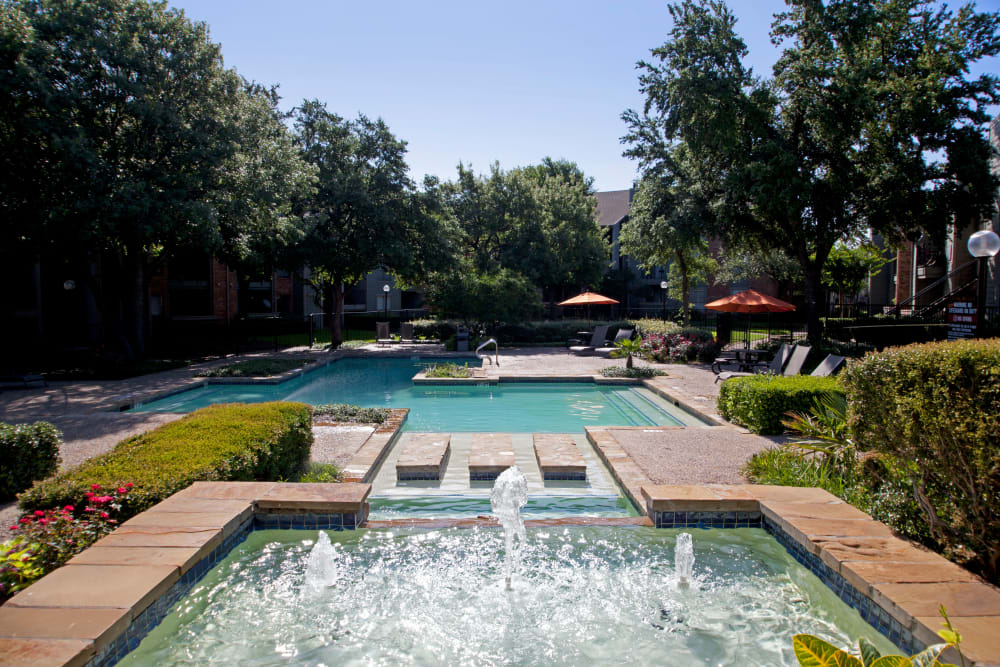 Resort style pool with a wooded view at The Madison in Dallas, Texas