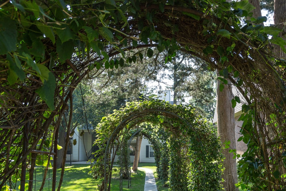 Walkway with multiple trellises lined with leaves to The Mansion in Independence, Missouri