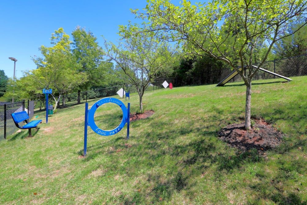 Dog Park in Sterling, Virginia offer a Swimming Pool