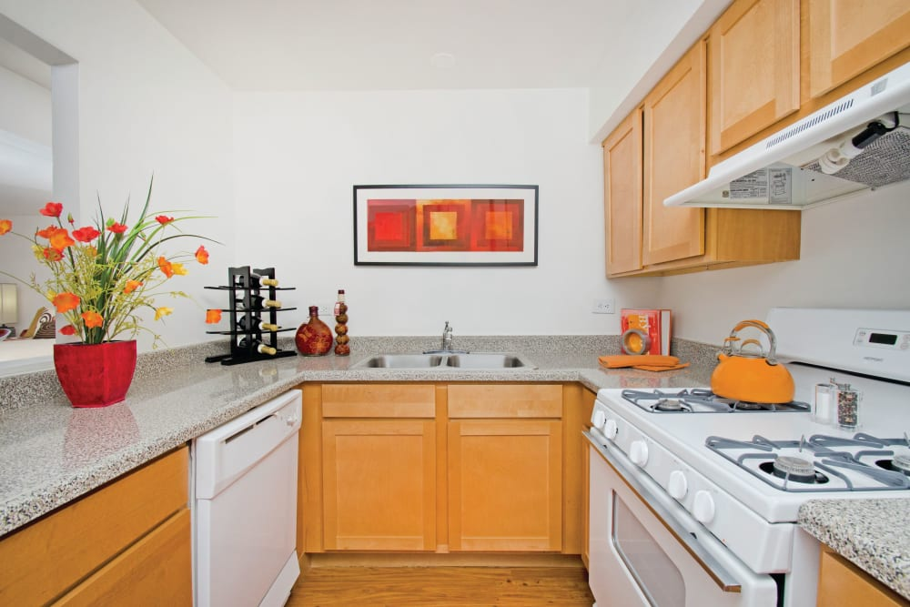 Model kitchen with hardwood floors and countertop decorations at The Gates of Deer Grove in Palatine, Illinois