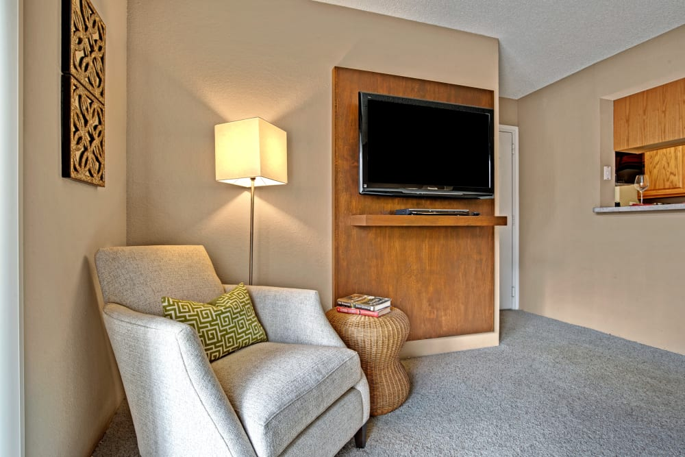Accent chairs and a view of the TV in the model living room at The Lakes of Schaumburg in Schaumburg, Illinois