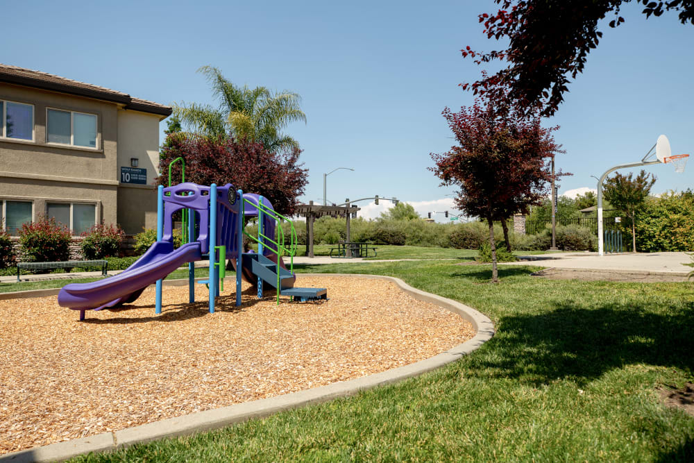 Beautifully manicured landscape with a large playground at Wolf Ranch Condominium Rentals in Sacramento, California