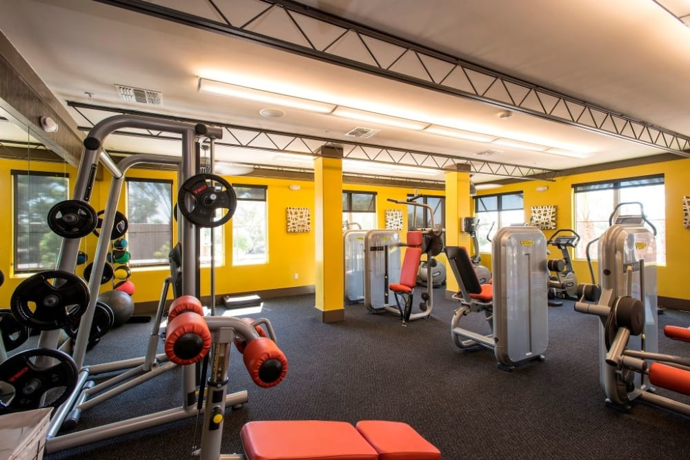 State of the art exercise equipment at Luxe Scottsdale Apartments in Scottsdale, Arizona