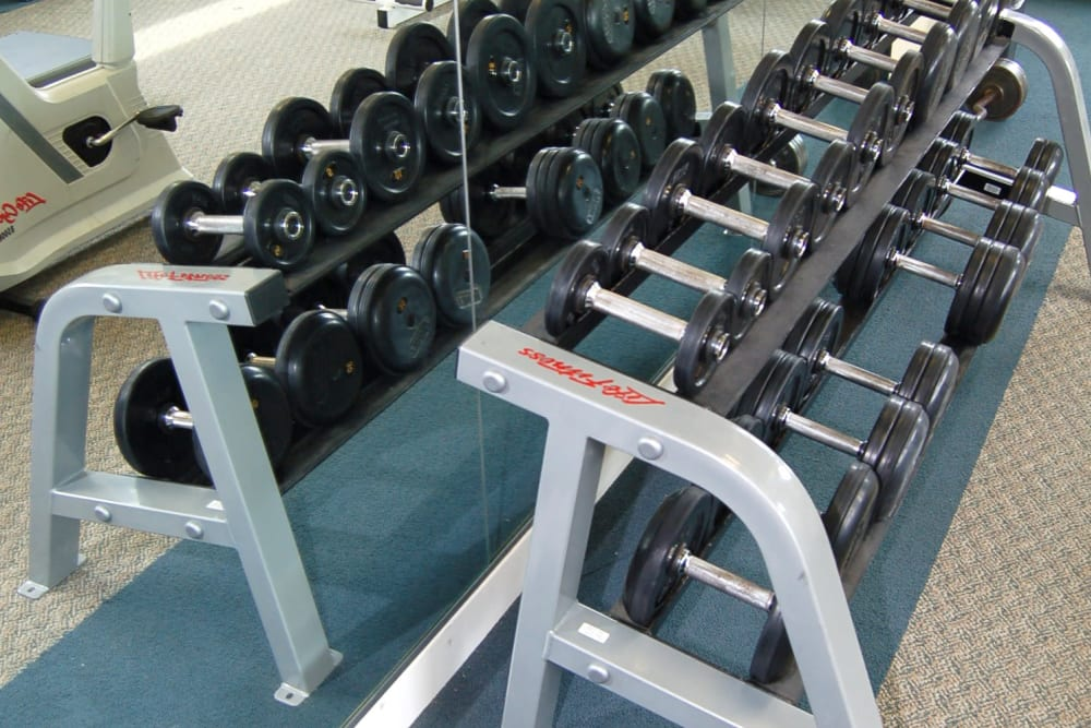 Plenty of free weights in the fitness center at The Village at Marshfield in Marshfield, Massachusetts