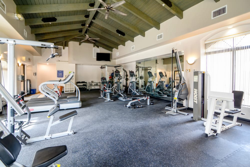 Large fitness center at The Palms on Scottsdale in Tempe, Arizona