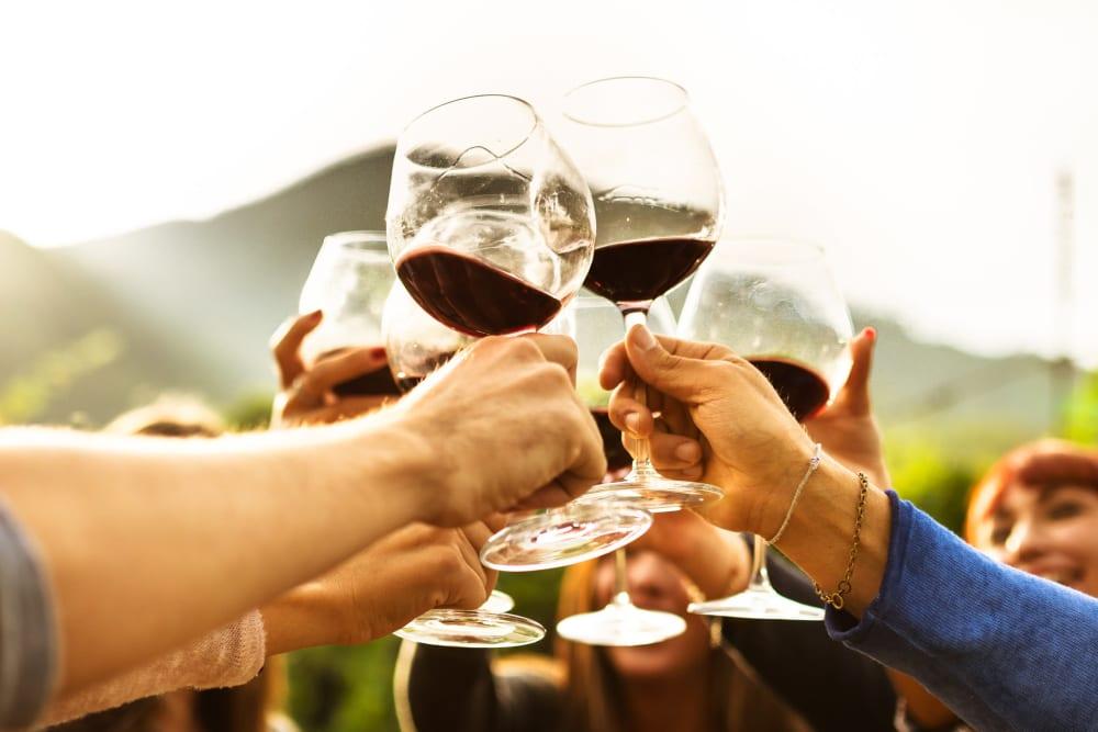 Friends sharing glasses of wine near Storage Star Napa in Napa, California